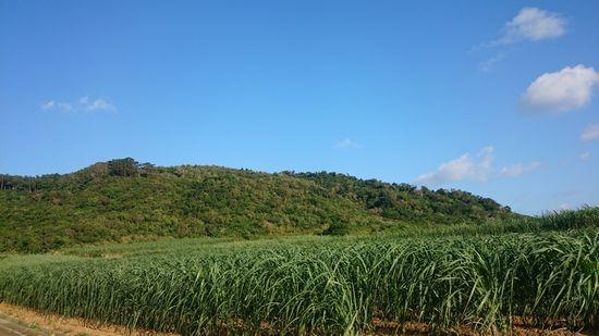山の稜線、キレイな景色です。
