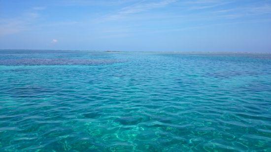 午後からも穏やかな海!まるでプールです