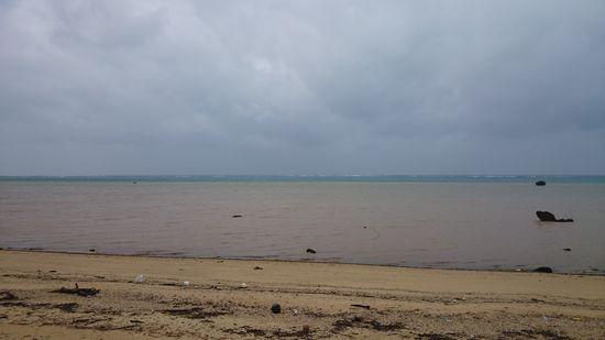 昨日の雨は、手ごわかったです。
