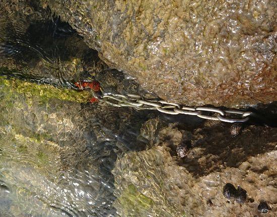 岸壁に結んだロープチェック