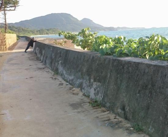 堤防沿いを歩いていると