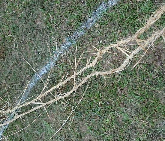 藁で紐を編みます♪