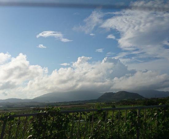 今日もオモト岳は雨です