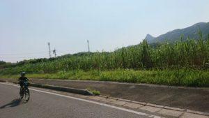 石垣島の海は今日もエメラルドグリーンです♪