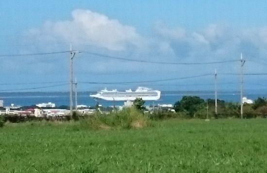 大きなクルーズ船です