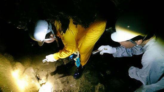 洞窟の鍾乳石を眺めています。