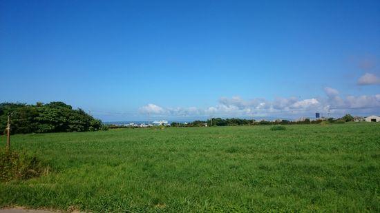 牧草地の向こうに海に竹富島を見ることができます。