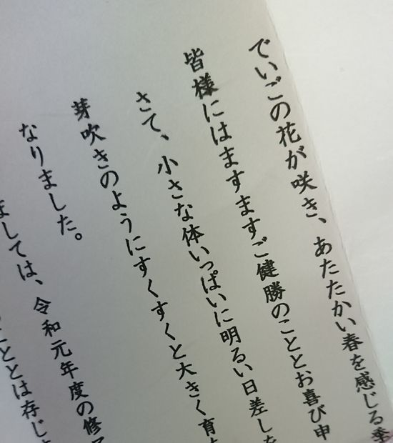 石垣島、春の風物詩です。