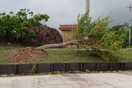 台風18号、石垣島に大きな被害はありません