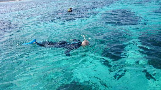 すいすい泳ぐお父さんは、80歳です