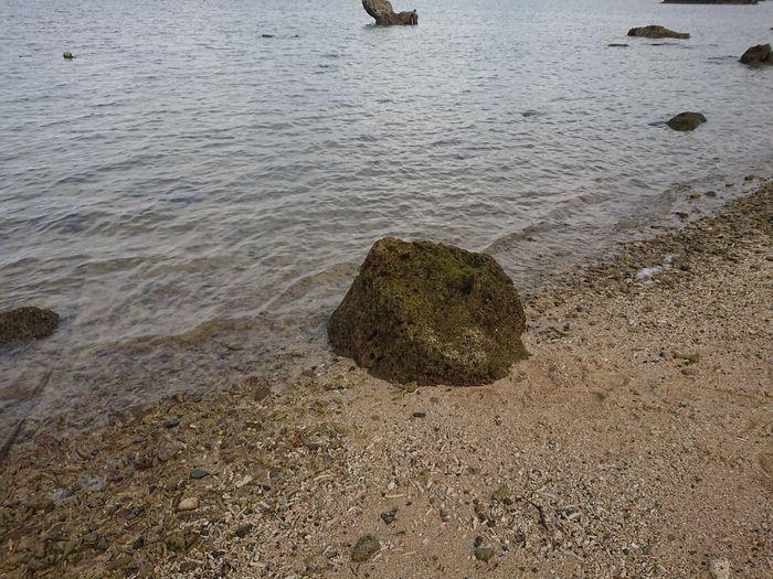 ビーチに転がっている岩