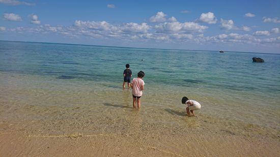 海遊びが始まりました