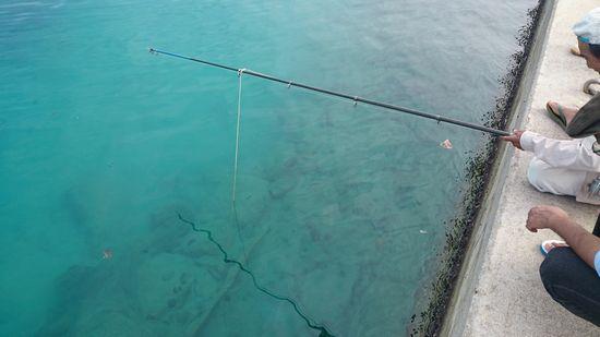 投網を釣りあげようとしています