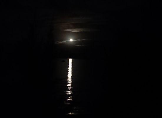 お月さんの登場です。