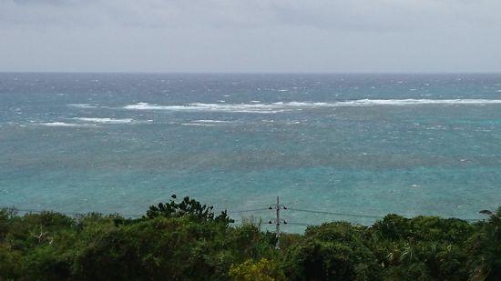 台風の波が高い~!