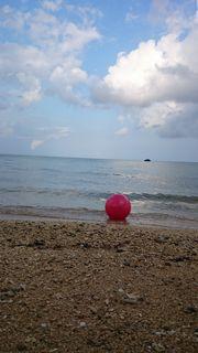 今日はビーチでお散歩です