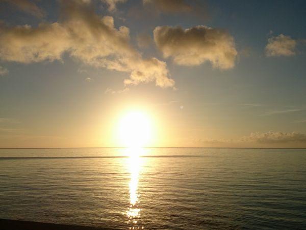 朝からやる気満々の太陽です