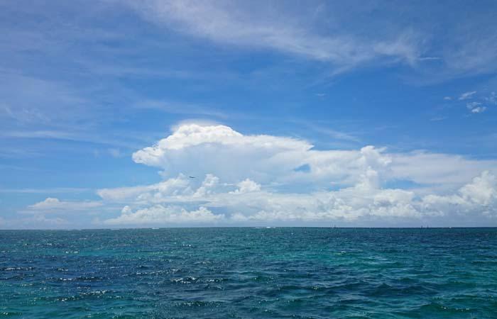 夏雲がキレイです