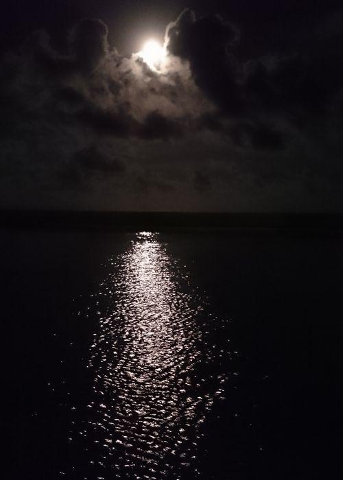満月の夜。水面にキラキラ月明かり