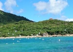 石垣島東海岸のシュノーケリングポイント紹介ブログ。ナータービーチは癖が強い!
