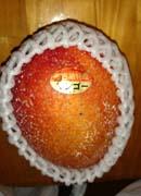 宮古島産のマンゴ!
