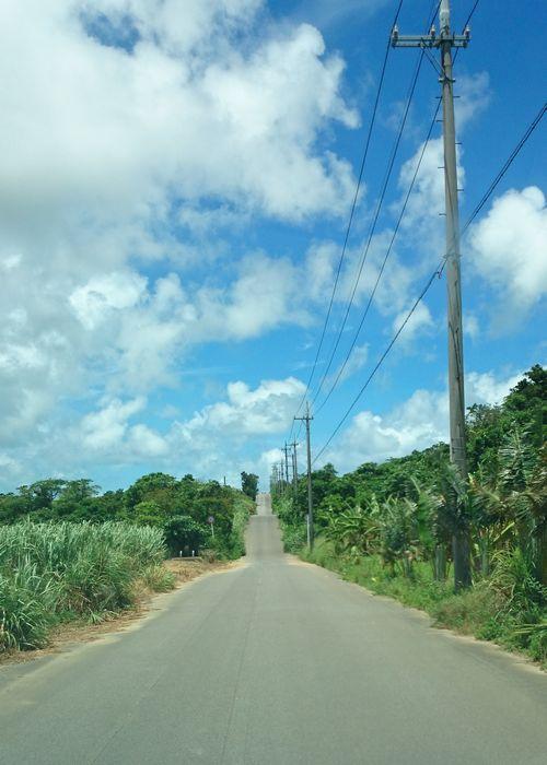 道路の先には青空です♪
