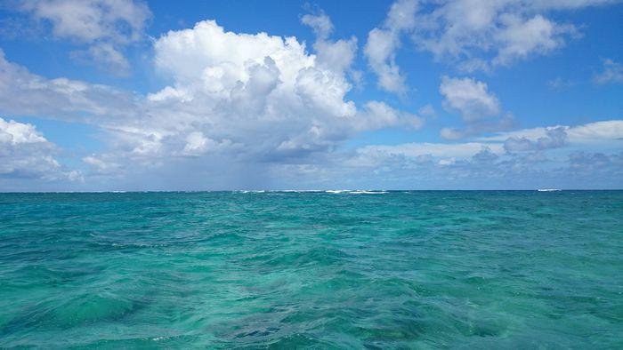 晴れていますが、波は高いです