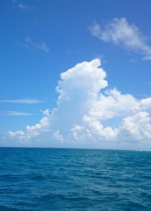 夏雲復活です♪