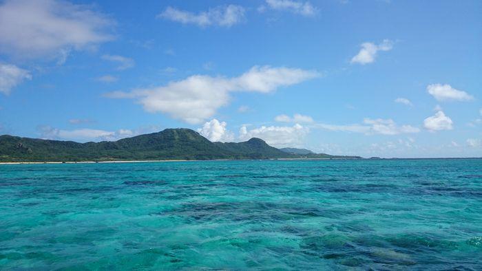 今日も透明度抜群の海でした