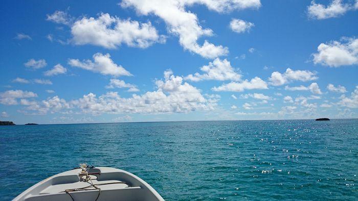 陸も海も観光日和です