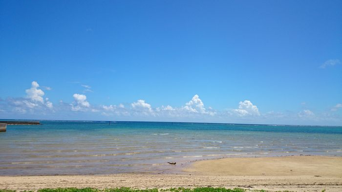 風はあるものの、波は穏やかです♪