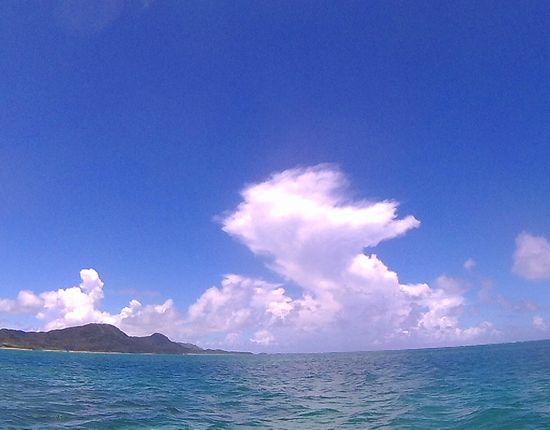 夏雲もくもくしています。