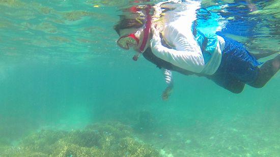 レベルアップで自由自在に泳ぎます♪