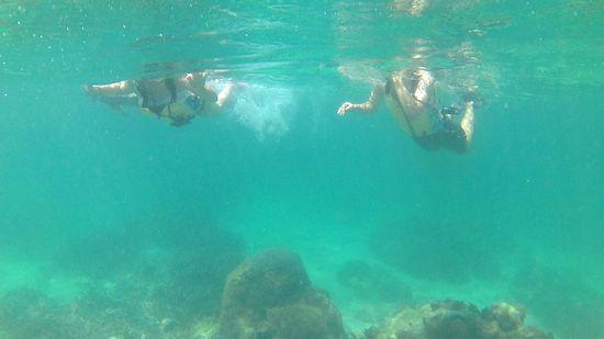 M浦さんとH松さん、余裕の泳ぎです