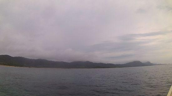 曇りの一日となりました。