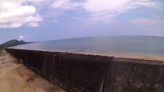 堤防沿いに黒網がいっぱい