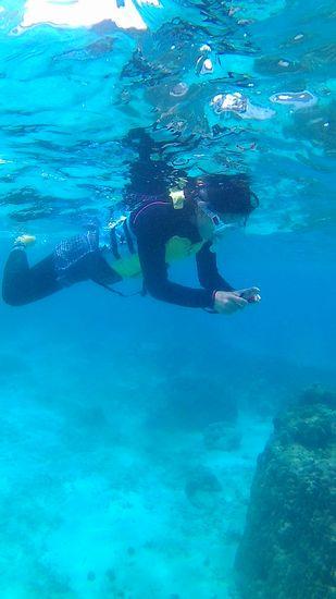 水中カメラを楽しんでいらっしゃいます。