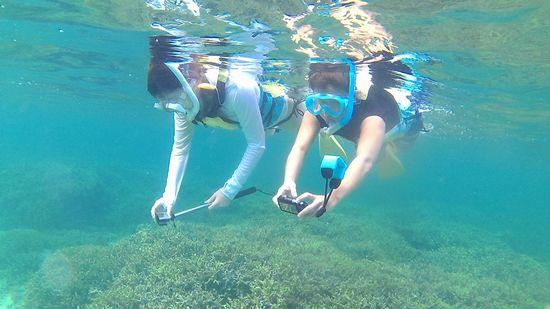 すぐにすいすい泳ぐお二人です
