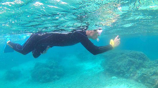水中撮影を楽しんでいます。