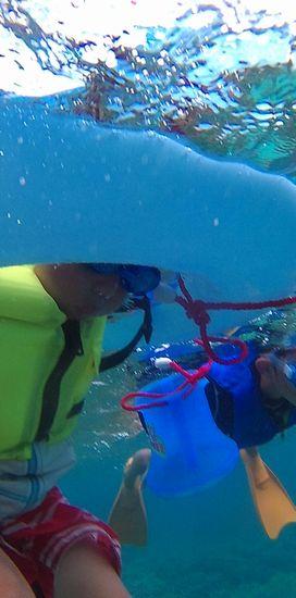 体を沈めて、ゴーグルで水中観察