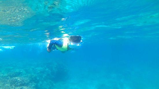 セイジロウ君、泳ぎ回りまくっています