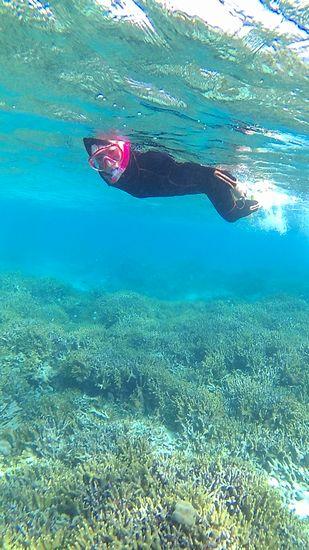 サンゴを楽しむK西さんです。