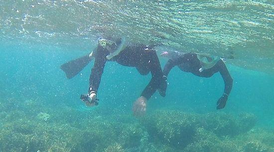 O沢さん、こちらも問題のない泳ぎです