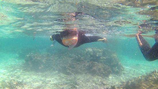 ひまりちゃんは歌を歌いながら泳いでいます。