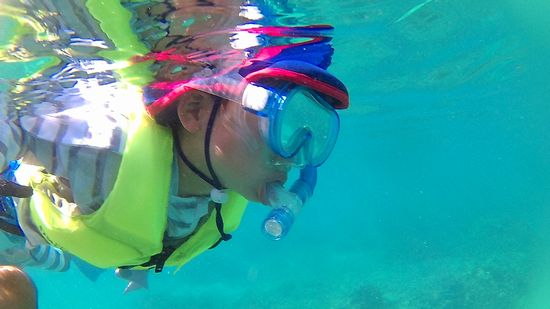 リト君、水中を楽しんでいます♪