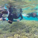 サンゴ群落に突入です