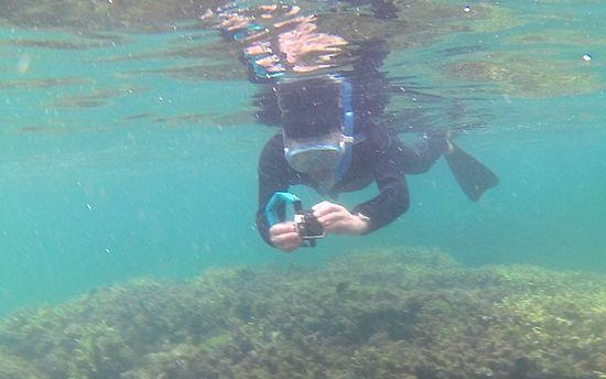 水中撮影に没頭の旦那さん