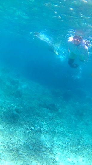 Y田さんもM瀬さんも余裕の泳ぎです