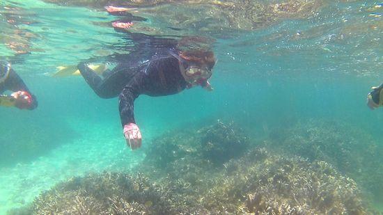 お母さん、水中世界にどっぷりはまっています
