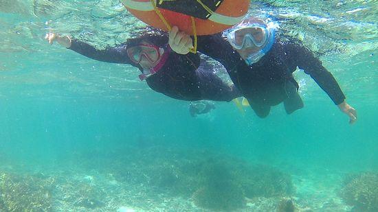ほらほら、水中世界を楽しめています